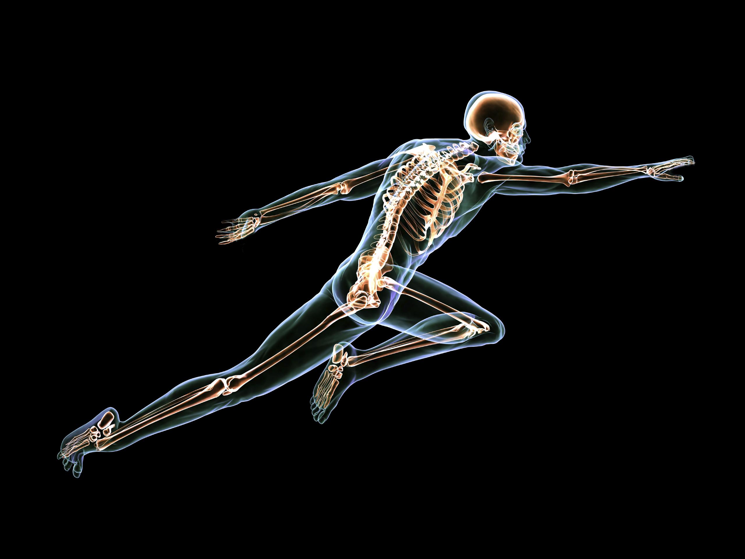 Qué son los huesos? | Dr. Mauricio Arouesty